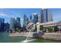 SINGAPORE Visit Visa  6000/=